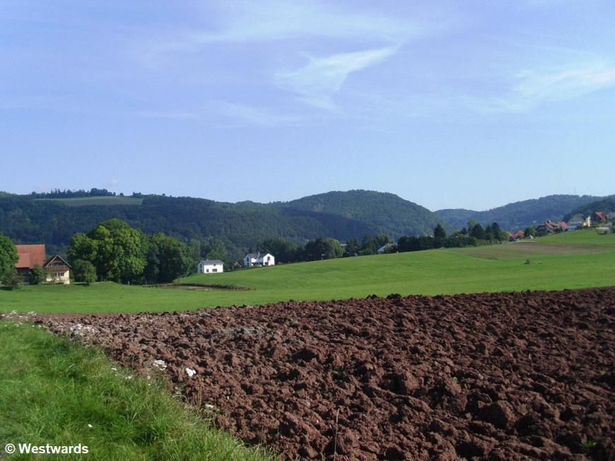 potato field with hills