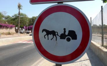 traffic sign banning horse carts on the Dakar corniche