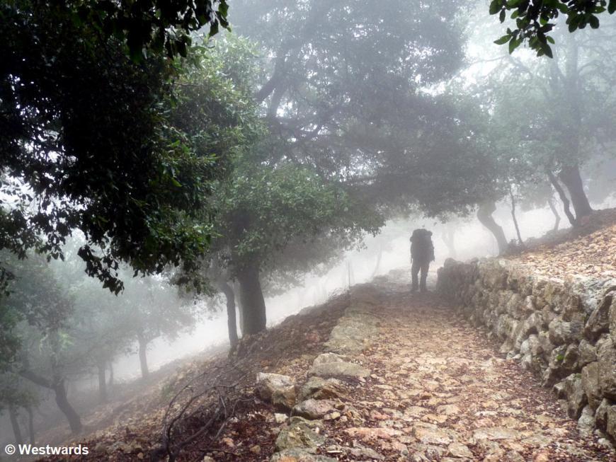 Natascha hiking on the GR221 Mallorca, in fog