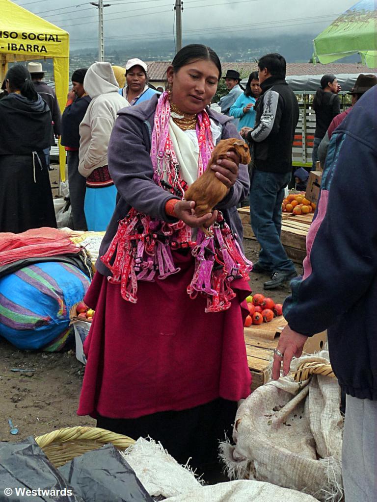 20120204 Otavalo Saturday market cuy seller 1310938