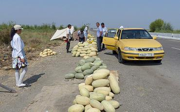 Taxi passengers buying melons at the street