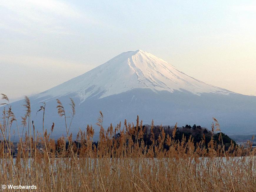 Fuji-san, seen from Oishi Koen near Kawaguchiko