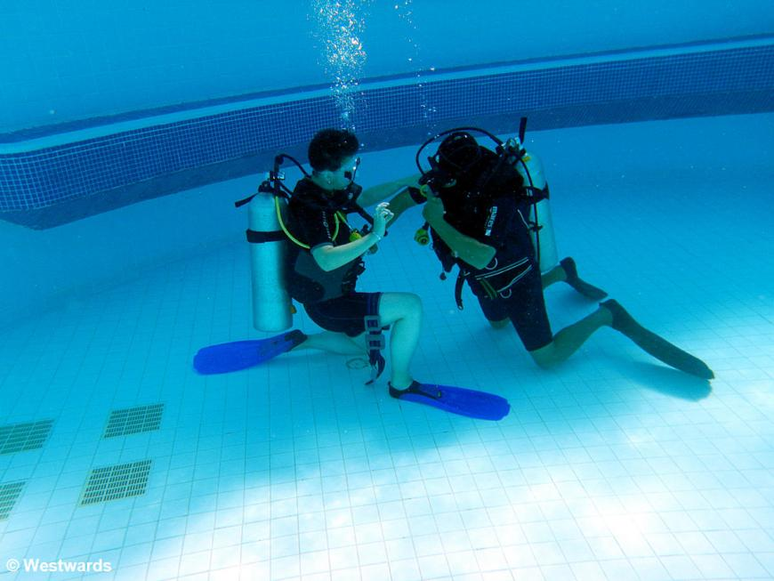 divers' training in the pool