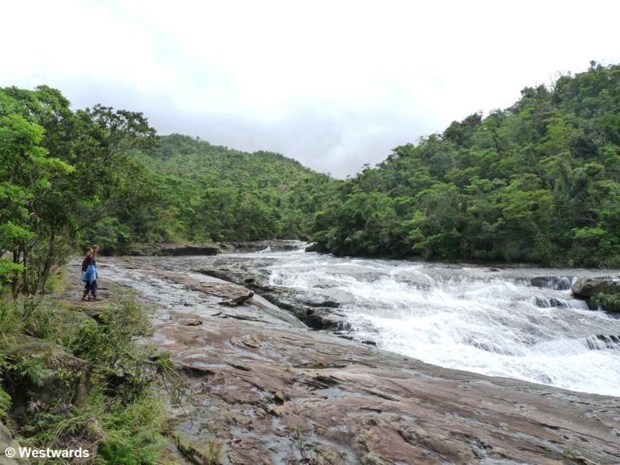 Kampire waterfall in the jungle of Iriomote