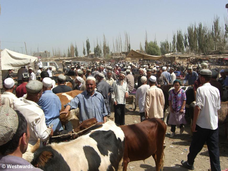 Lifestock market in Hotan
