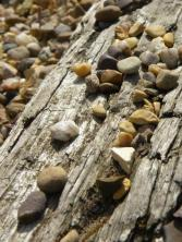 Wood & Stone - PH