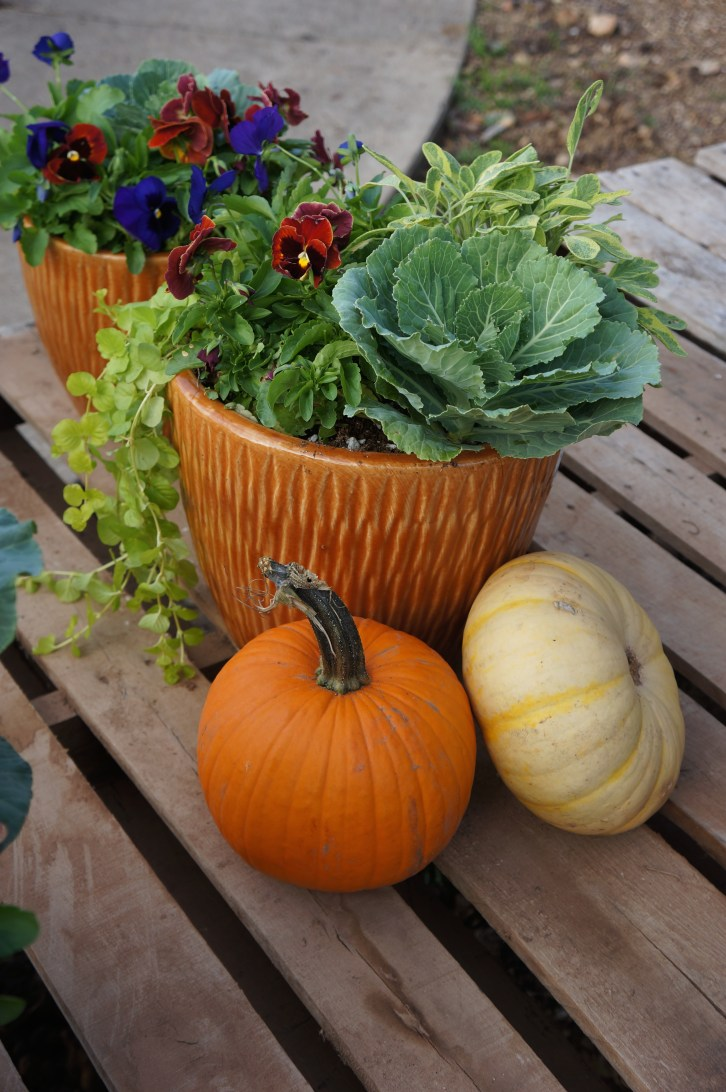 Fall patio pot