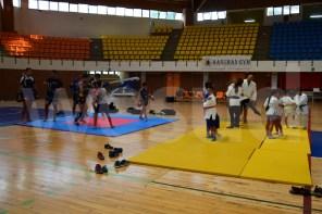 palamilone judo