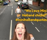 Mini Holland chicks