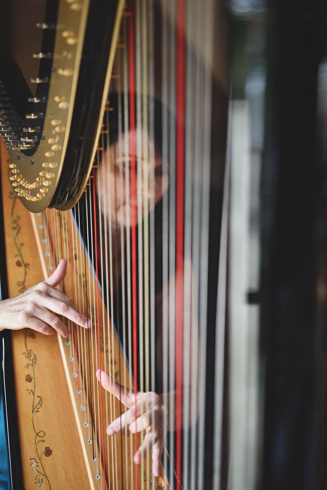 Harpist - Sandhole Oak Barn Wedding