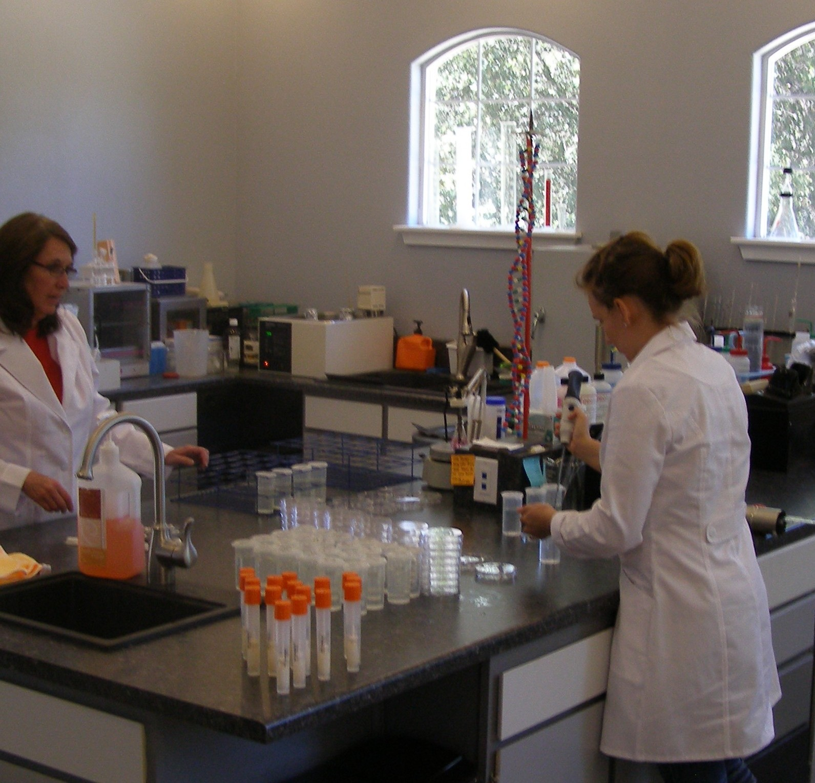 Tests and Services   Water Environmental Testing Laboratory