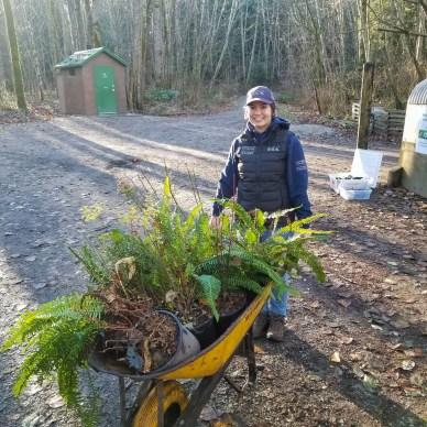 Wetland Steward, Kendall McLaughlin planting native species.