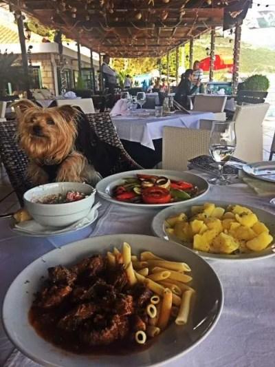 10 Best Food in Budva, Montenegro_beef goulash