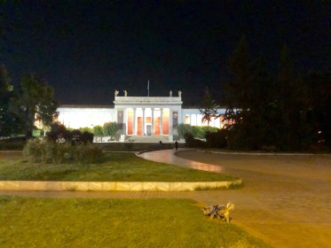 Dog Travel In Athens, Greece: A Yorkie travels to the ancient city