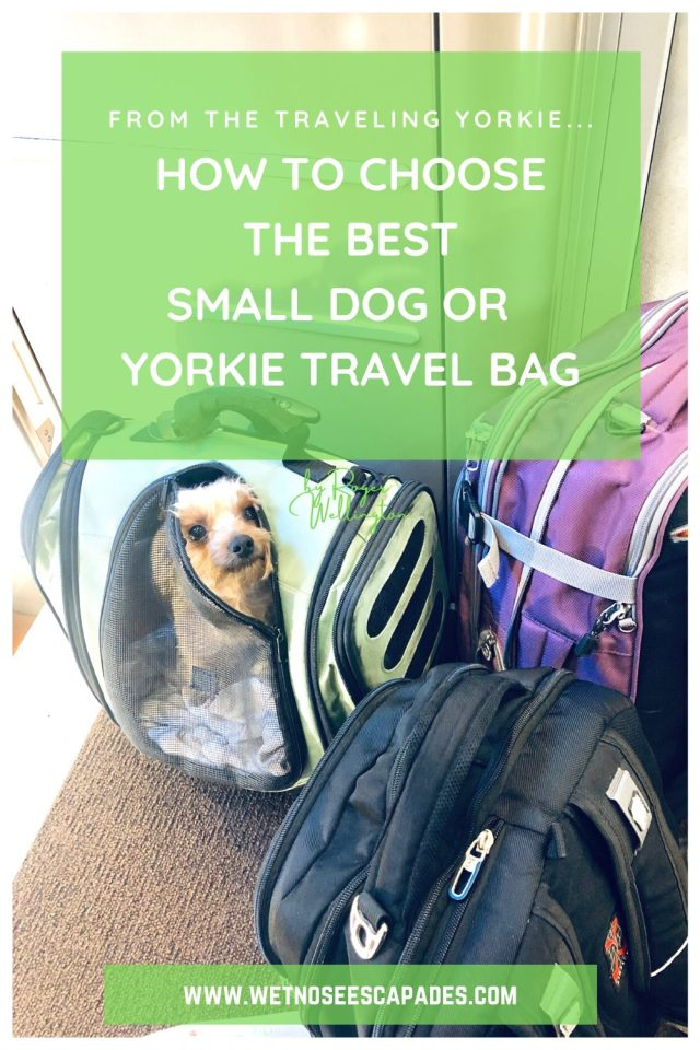 Choosing the BEST Small Dog or Yorkie Travel Bag