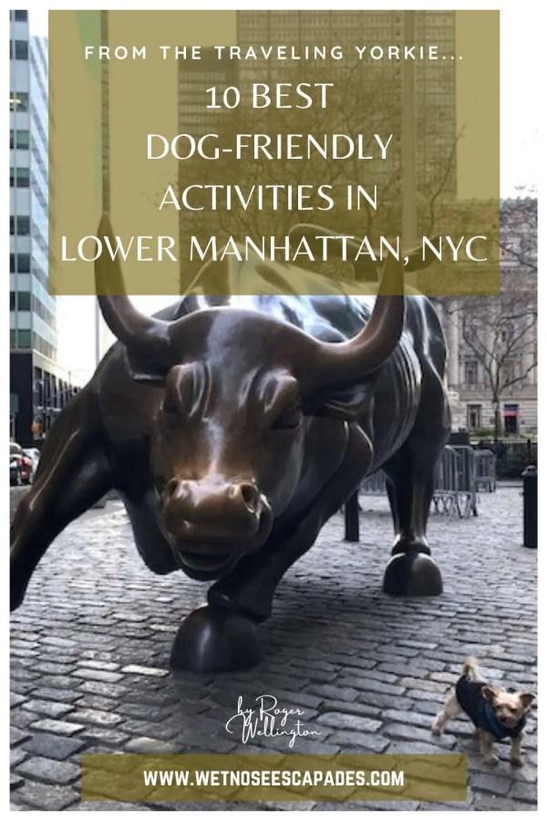 Best Dog-Friendly Activities in Lower Manhattan, NYC