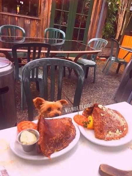 dog friendly restaurant in Santa Cruz, The Crepe Place