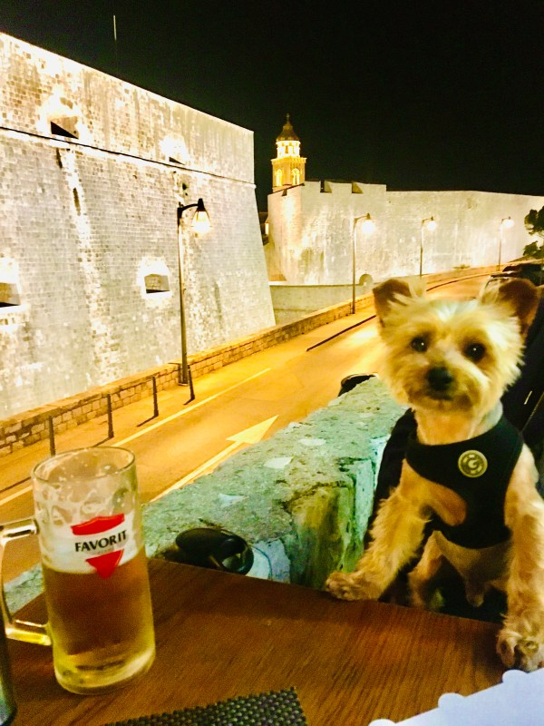 10 things to do with your dog in Dubrovnik, Croatia