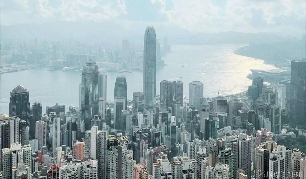 dog-friendly Victoria peak, Hong Kong
