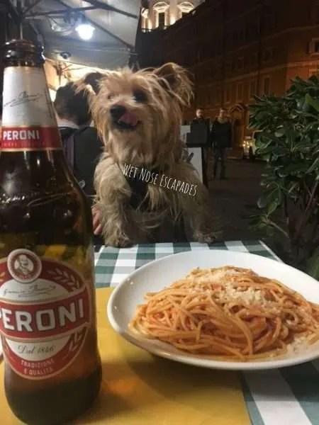 dog friendly restaurants in rome