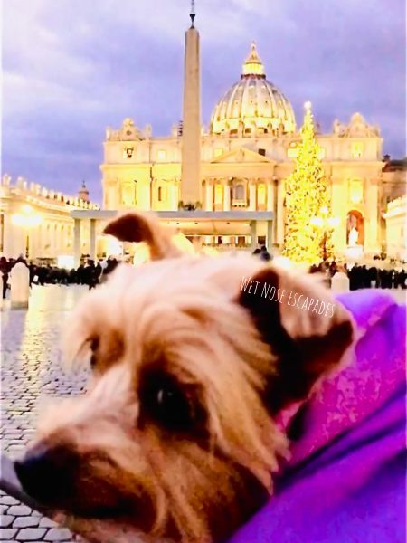 dog friendly vatican city