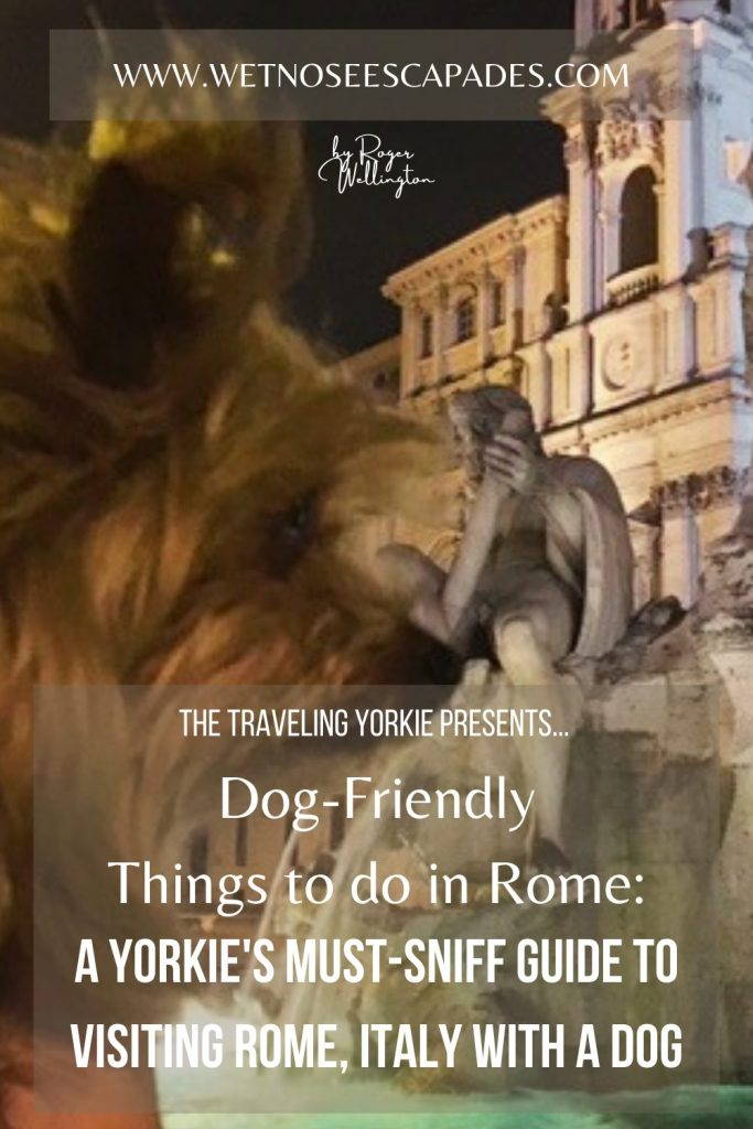 Dog-Friendly Things to do in Rome: A Yorkie's MUST-SNIFF Guide to Visiting Rome with a Dog