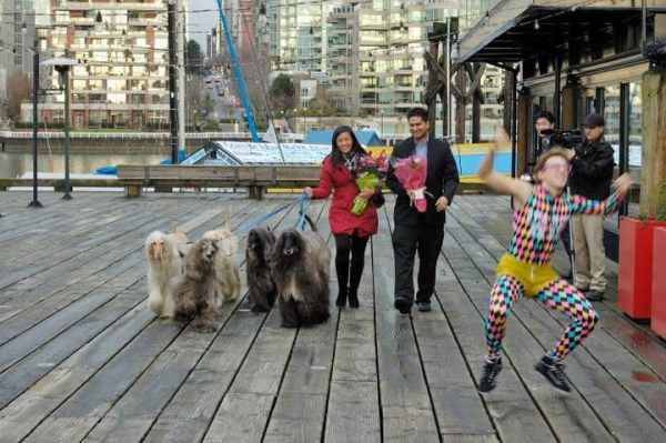 Best Things to Do in Vancouver Canada Ricky Shetty with wife walking dogs on pier Granville Island