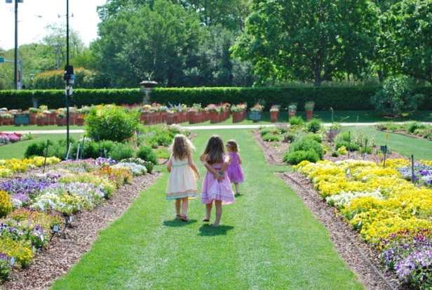 Best Things to Do in Dallas Philip Taylor Dallas Arboretum