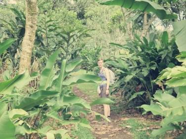 Langsam ging es tiefer in den Dschungel