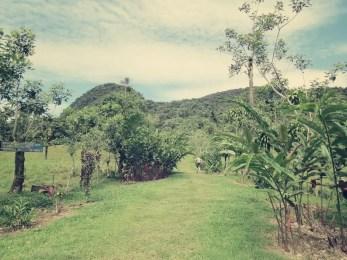Am Fuße der Cerro Chato bietet sich noch eine Weitläufige Sicht