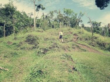 Der Weg hinauf fing an immer steiler zu werden