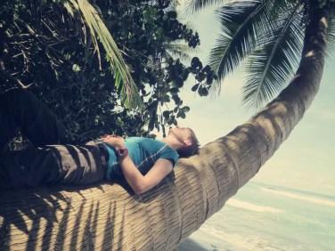 Zwei Palmen wie für uns zum Warten gechaffen