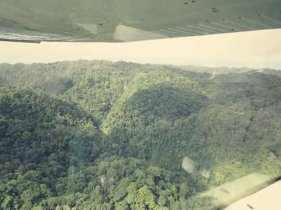 Rückflug nach Puerto Jimenez