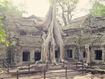 Ta Prohm Tempel - Tomb Raider Temple