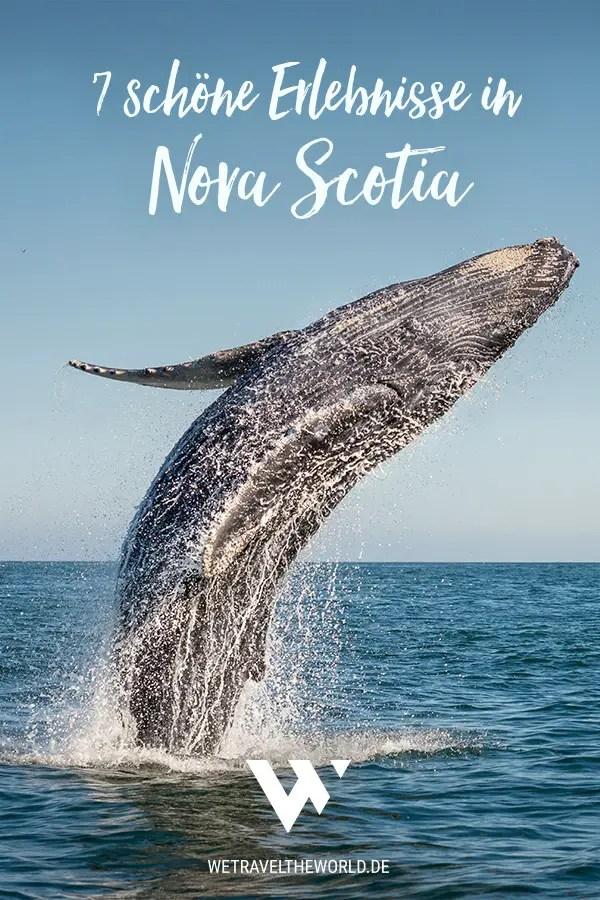 7 schöne Erlebnisse für deine Nova Scotia Rundreise, Kanada #roadtrip #abenteuer #reisetipp