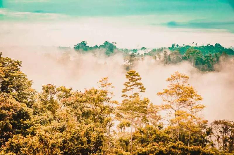 Kokoda Trek – Die besten Treks der Welt | Schönste Trekkingtouren weltweit