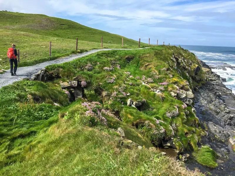 coastal-walk_IMG_3867