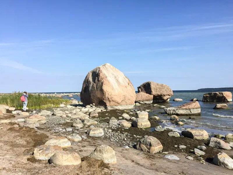 estland_lahemaa_nationalpark_IMG_7969