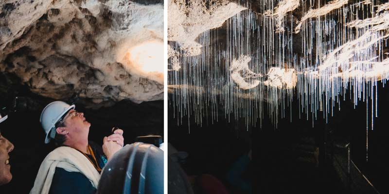 Neuseeland Nordinsel Highlights Waitomo Caves