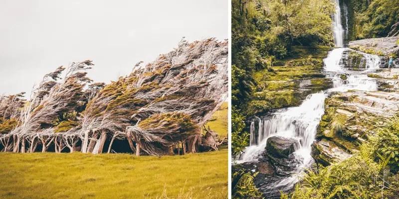 Neuseeland Südinsel Highlights Catlins