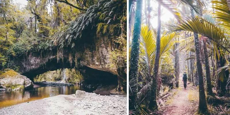 Neuseeland Südinsel Highlights Heaphy Track