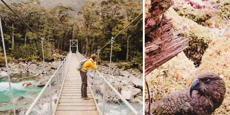 Neuseeland Südinsel Highlights Routeburn Track