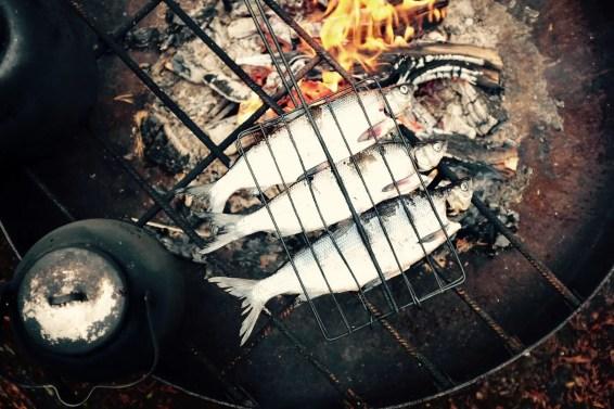 palosaari_reindeer_and_fishing_farm_ruka_finland_03