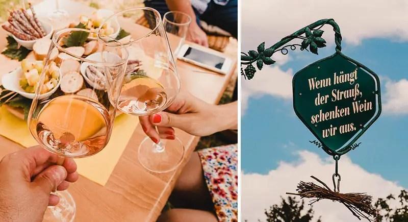 Saale Unstrut Reisetipps - Weinprobe