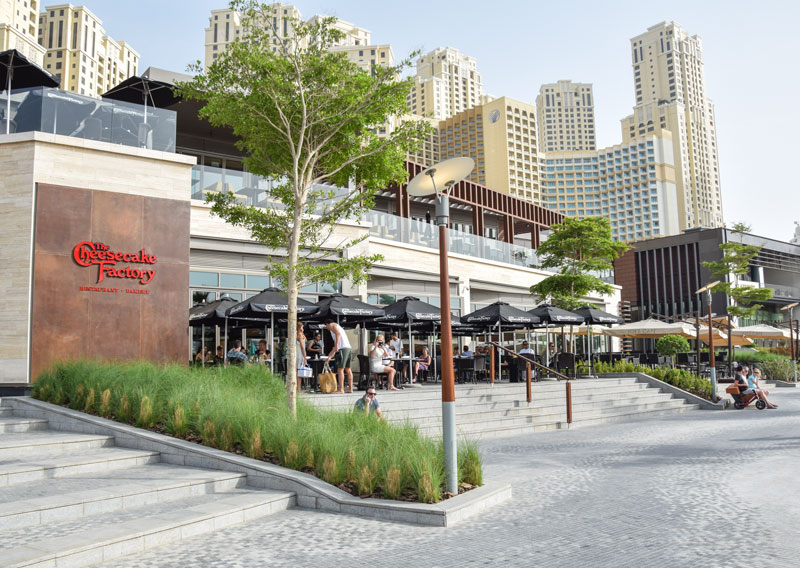 the beach marina jbr dubai