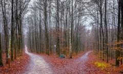 // Herbstbilder 2015 //