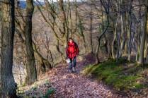 Im Wald bei Heimbach