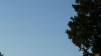 Offenbar war mein Ballon nicht alleine unterwegs, zumindest in den unteren Luftschichten