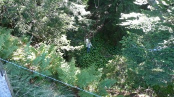 Zum Glück fanden der Ballon und der Fallschirm den Weg ins Tal, so kann die Box am Seil heruntergerissen werden