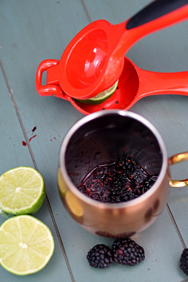 Give your mule a little kick by making it a Blackberry Balsamic Mule! The Balsamic adds the perfect flavor to blend with the ginger and the lime~ By Wet Whistle Drinks by Darla Bentley